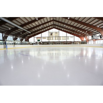 Synthetic ICE Patinoar 300 m²